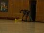 Indoor Fliegen 2009